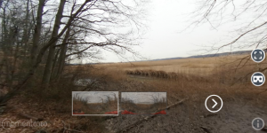 A Virtual Reality tour of the Piermont Marsh